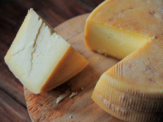 queso chipilo